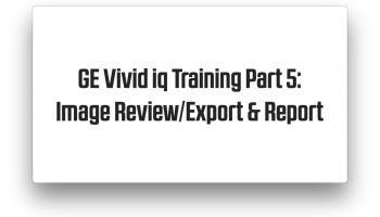 Image Review, Export, and Report training on the GE Vivid iq